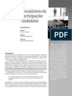 CAPITULO IV MECANISMOS DE PARTICIPACION