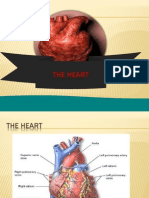6.Heart
