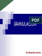 Técnica de Granulación