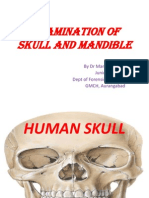 Skull and Mandible- Forensic Anatomy