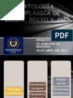 Patología Neoplásica de Cólon y Recto