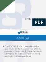 Sped e Social Consult