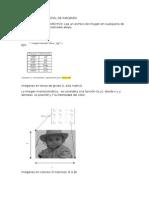 practica1_procesamiento