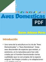 Especialidad Aves DEFINITIVA
