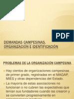 Demandas Campesinas, Organización e Identificación