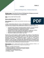 Efektívnosť členstva - IIR