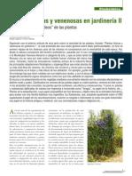 Pág 47-54 Etnobotanica