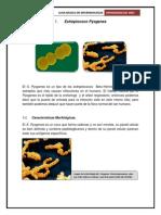 Guia Basica de Microbiologia2