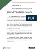3.3.2. ASPECTOS FÍSICOS NATURALES..pdf