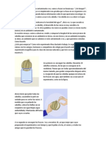 El Bioensayo de La Cebolla