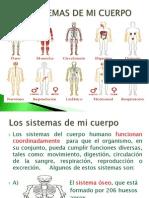 Los Sistemas de Mi Cuerpo (1)