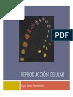 06- Reproduccion Celular