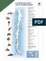 Sitios Prioritarios Conservacion Chile