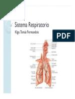 07- Sistema Respiratorio