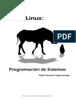 Pablo Garaizar - GNU Linux Programacion de Sistemas