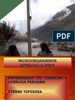 CLASE 13_1 - Enfermedad de Carrión