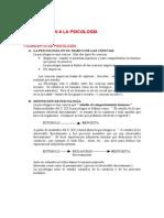 Apuntes Psicologia RaulNadal