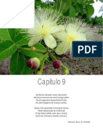 Caracterização da fauna e flora do cerrado EMBRAPA.pdf