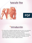 Musculo liso.pptx