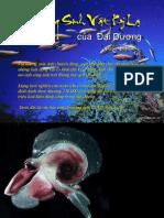 Nhung Sinh Vat Ky La Duoi Dai Duong