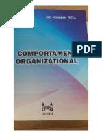 12. Comportament Organizational (Ioan Petca)