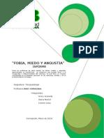 ANGUSTIA informe (1) (3)