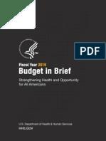 Fy 2015 Budget in Brief