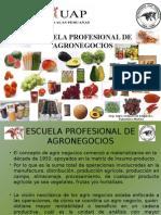Escuela Profesional de Agronegocio Alas Peruanas