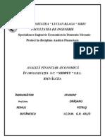 Analiza_economica_financiara