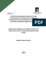 Marieli Basso Bolpato.pdf