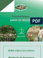 Banco de Proteina Producao de Forragem-libre