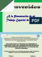 Presentación Tesis Final