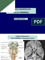 15572301 6ta Clase Neuro Tronco Encefalico Dr Correa