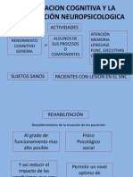 Clases Neurociencias III