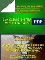 Lixiviación De Menas Auriferas Con Sales Oxidantes En Medio Ácido Mediante El Proceso Severo.ppt