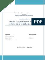 concurrence au sein du secteur de la telephonie (finale).docx
