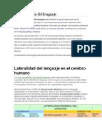 Lateralización Del Lenguaje