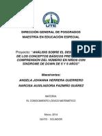 2 Proyecto Conceptos Básicos Previos a La Comprensión Del Número Niños Con SD