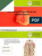 Principios de Adhesion Dental