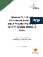Diagnostico de Los Factores Que Influyen en La Productividad Del Maiz