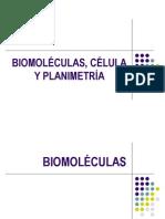 Biomolculas, Clula y Planimetra