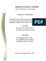 Cuantificación del carbono almacenado.pdf
