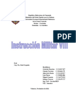 Trabajo de Ins. Militar VIII