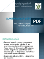 Principios Básicos de Radiología 2014