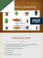 Devónico (insectos).pptx