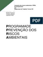 Programa de Prevenção Dos Riscos Ambientais.