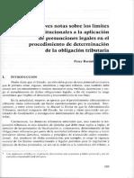 Breves Notas Sobre Los Límites Constitucionales - Percy Bardales