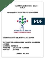 Universidad Privada Domingo Savio 2