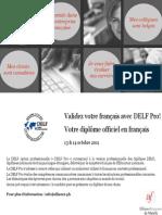 Delf1 Pro Flyer Fr&Eng