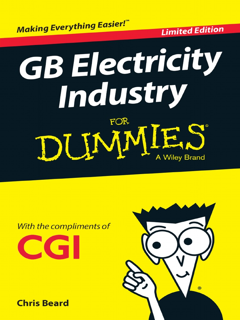 GB Elecricity Industry for Dummies | Wind Power | Electricity Generation